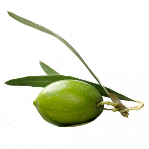 Oliva 100% virgen (Aceite de)